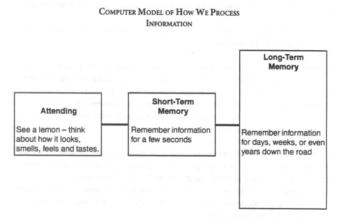 Computer Model of How we Process Information